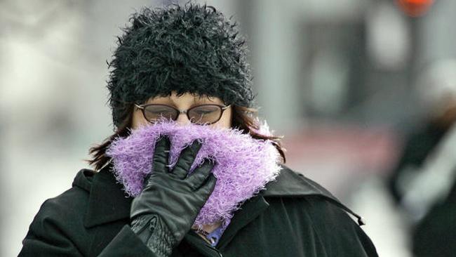 tlmd_congelantes_temperaturas_ny_ny